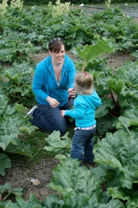Picking rhubarb with Mummy
